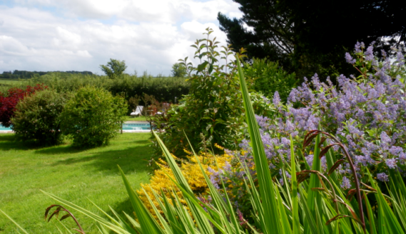 Pond Cottage, Tiverton, Devon